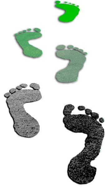Your Household Carbon Footprint