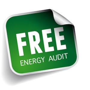 Free Energy Audit for Business